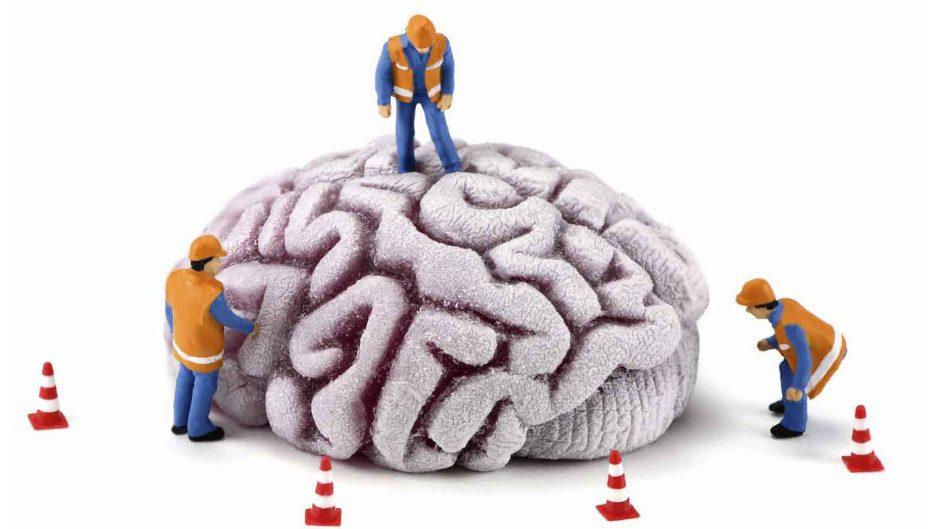 Техническое обслуживание мозга.